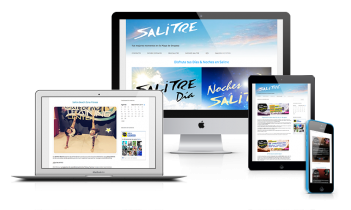 Diseño página web Salitre